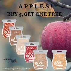 Scentsy scents of fall