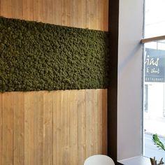 Mose vegg fra WALL-IT! Bamboo Cutting Board, Restaurant, Interior, Wall, Home Decor, Gardening, Decoration Home, Room Decor, Design Interiors