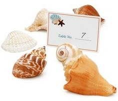 Seashell place card holders/ Table number holder Price: $6.95 Count: 6