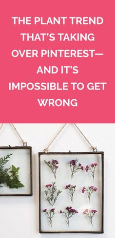 The Plant Trend That's Taking Over Pinterest—And It's Impossible to Get Wrong | Hint: There's no watering required. Easy Diy Crafts, Diy Craft Projects, Handmade Crafts, House Projects, Craft Ideas, Trending Crafts, Crafty Craft, Crafting, Diy Wall Art