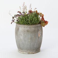 A Vintage Zinc Barrel filled with green. | Image via: shopterrain.com