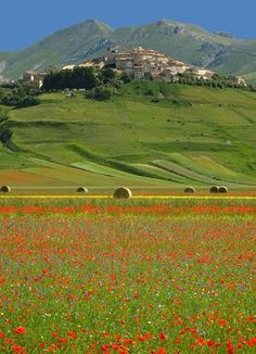 Leggi i consigli di Venere per viaggiare in Umbria, scopri i nostri itinerari in Umbria