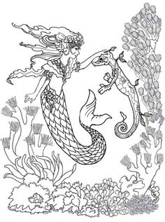 Mermaid Fairy And Sea Horse Coloring Pages