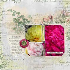 2015 Peonies #scrapbook #peonies #vintage #flowers
