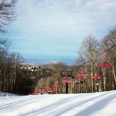 1000 images about gatlinburg attractions on pinterest for Www cabins of the smoky mountains com