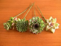 Etsy の 16 Wired Succulents for DIY bouquet by SucculentlyUrban Succulent Centerpieces, Succulent Bouquet, Succulent Arrangements, Succulent Ideas, Diy Wedding Bouquet, Diy Bouquet, Wedding Flowers, Green Wedding, Purple Succulents