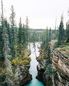 jared chambers - Alberta - September - 2013 Mamiya 7ii ...