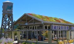 Gorgeous living roof tops AMY'S Kitchen drive-thru in San Francisco | Inhabitat - Green Design, Innovation, Architecture, Green Building