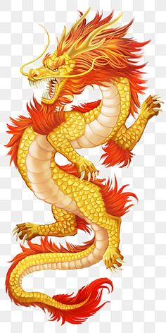 cartoon dragon,flying dragon,dragon claw,dragon,realistic dragon,shock,atmosphere,dragon clipart,chinese clipart,dragon logo,golden glitter Chinese Dragon Drawing, Dragon Tattoo Drawing, Dragon Images, Dragon Pictures, Eid Al-adha, Realistic Dragon, Style Chinois, Mythical Dragons, Cartoon Dragon