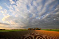 Dutch landscape Daniel-Bosma