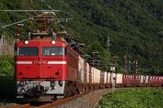 JR貨物 EF81 原色・更新色 日本海縦貫線 写真データ3枚_画像1