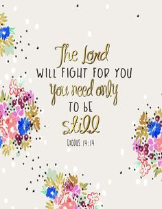 The Lord will fight for you  You need only to be still Exodus 14:14