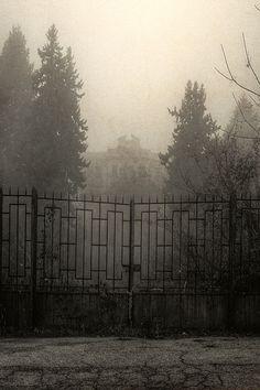 Asylum by Aurélien Villette