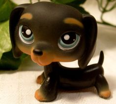 Pet Shop Black & Tan Dachshund Dog #325 Green eyes - Littlest Pet Shop