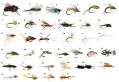 Gink & Gasoline's Top Fly Pattern Picks for 2013