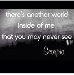 ♏️That's a Scorpio