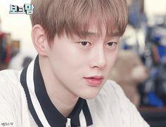 Kwon Hyunbin - JBJ Pretty Boys, Cute Boys, Kwon Hyunbin, Hyun Bin, Rapper, Blessed, Idol, Handsome, Husband