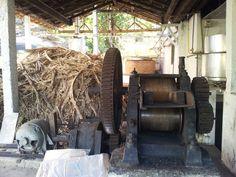 Aqui extraimos o melhor caldo-de-cana do Brasil.