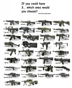Barrett 50, AA12, MP5. What three would you choose?