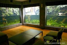 Image result for large aquarium builds in homes