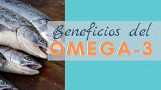 El Omega 3 es ampliamente conocido por sus beneficios a nivel cardíaco, sin embargo, este aceite, preferiblemente proveniente del pescado aporta beneficios a nivel gastrointestinal, el cual es fundamental para un tratamiento de Intestino Permeable. Omega 3, Intestino Permeable, Oil