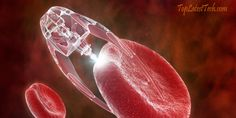 What is nanotechnology in everyday life?Nanotechnology Future