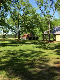 View of Back Barn and Barn Pavilion from the Pecan Orchard at The Fritz Farm Wedding Venue in Cordele, GA