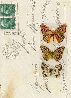 "mail art ""Sending Butterflies and Love"" by Maria-Thérèse Andersson. Images Vintage, Vintage Postcards, Mail Art, Vintage Paper, Vintage Art, Illustrations Vintage, Old Letters, Image 3d, Decorated Envelopes"