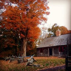 Project 365 - Each day a new adventure: Day 194: Jockey Hollow