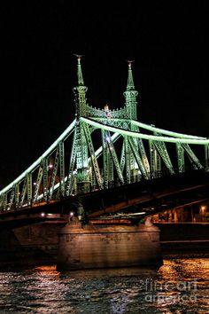 This is the Liberty Bridge, located in Budapest, the capital of Hungary. It was built in and is beautifully lit up at night. Liberty Bridge, Danube River Cruise, Capital Of Hungary, Visit Prague, Buda Castle, Central Europe, Budapest Hungary, Oh The Places You'll Go, Tower Bridge