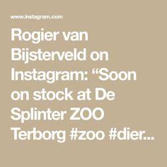 """Rogier van Bijsterveld on Instagram: """"Soon on stock at De Splinter ZOO Terborg #zoo #dierentuin #tierschutz #garden #animals #wood #carving #dier #dieren #duurzaam #teak…"""" Instagram, Animal Welfare"""