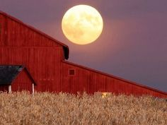 Harvest moon.  A lovely IOwa farm with corn... pastures... one heck of a hay barn so there are cows too.... nothing beats this.... there is room for a pony.........