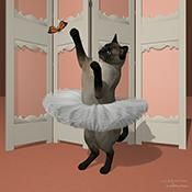 Contemporary wall art and modern art pictures of ballerinas and ballet as art prints, large canvas art and budget dance posters. I love ballet T-shirts. Ballerina Art, Ballet Art, Lovers Art, Cat Lovers, Modern Art Pictures, Dance Posters, Large Canvas Art, Contemporary Wall Art, Cat Cat