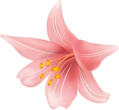 Lily Wallpaper, Clip Art, Outdoor Decor, Flowers, Pictures, Image, Design, Florals, Photo Illustration