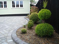 Driveway Paving, Driveway Landscaping, Walkway, Front Garden Ideas Driveway, Driveway Design, Small Brick Patio, Brick Patios, Drive Gates, Tarmac Driveways