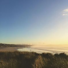 Beautiful light on Gwithian beach yesterday evening   #360beaches #beach #cornwall #lovecornwall #kernow  #coast #surf #surfer #surfing #waves #gwithian #godrevy #sand #wanderlust  #sea #ukpotd #sunset #sunshine #reflection #silhouette #nationaltrust #swisbest #igerscornwall