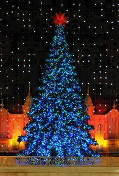 Macy's Wanamaker Light Show Magic Tree (Philadelphia)