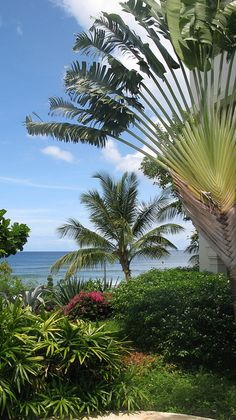 Beautiful Barbados - http://www.travelandtransitions.com/destinations/destination-advice/latin-america-the-caribbean/