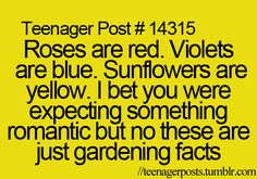 Roses are red. Here's something new, Violets are violet not really blue