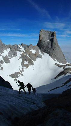 runners llegando a collada Bonita (2.382 m) con la sur del Urriellu al fondo. Punto mas alto de carrera