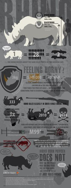 This infographic, created by Earth-touch.com, shows the dangers that rhinos face around the world. Out in the wild, rhinos have no real predators. Even tigers and lions stay the hell away from them. Their imposing physique coupled with the fact that they can go completely ballistic when provoked has taught other animals to avoid them.