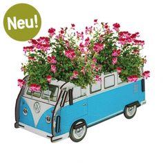 Werkhaus Shop - Blumenkasten VW T1 - Klein