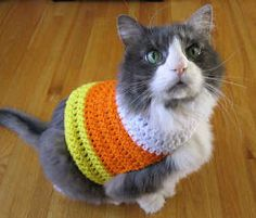 Candy Corn Pet Sweater | AllFreeCrochet.com  I wonder if my cat Dutchie would go for it? Hmmm... probably not.