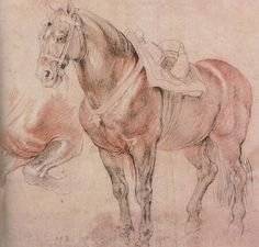 Peter Paul Rubens - Sketch of Horse