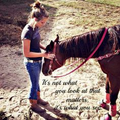 barrel horse, horses, horse, cowgirl, love