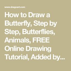 How to Draw a Butterfly, Step by Step, Butterflies, Animals, FREE Online Drawing Tutorial, Added by Dawn, February 21, 2008, 5:36:49 am