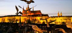 Un week-end éclair à Prague et 25 choses à «tchéquer»