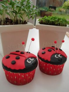 Lady bug cupcakes Katey would love these! Fondant Cupcakes, Cute Cupcakes, Cupcake Cakes, Cup Cakes, Ladybug Cakes, Ladybug Party, Valentines Day Cakes, Cupcake Heaven, Cakepops