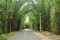 KeralaPackages.co have designed 2 Ni & 3 Days hill station #tour & #travel package for you and your family. http://www.keralapackages.co/tour-package/2nights-3days-calicut-wayanad-vythiri-tour-package