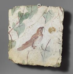 Charming wall fragment from Pompeii! From the Met.